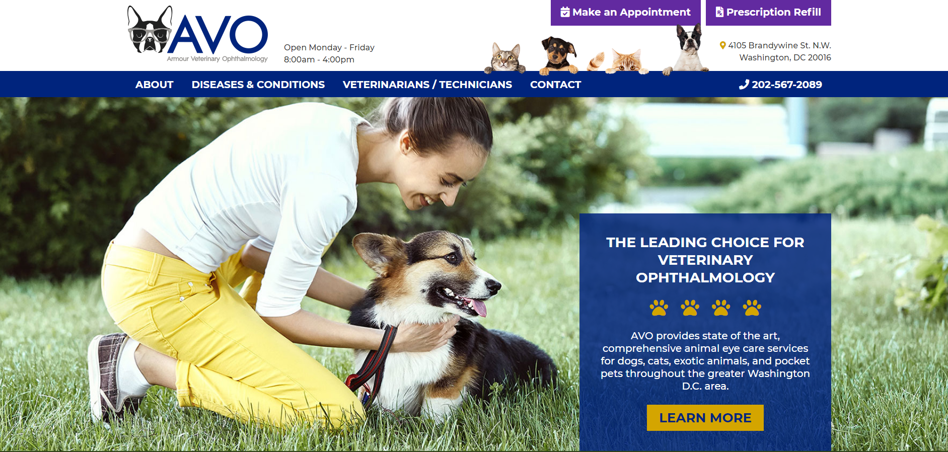 Armour Vet Ophthalmology Screenshot of Homepage
